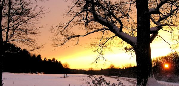winter sunset look back at 2010 hires 2010: How your predictions fared